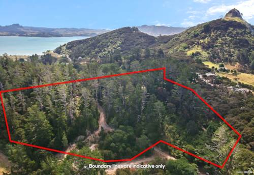 Whangaroa, No Covenants Bush Block. 2.55ha, Property ID: 786955 | Barfoot & Thompson