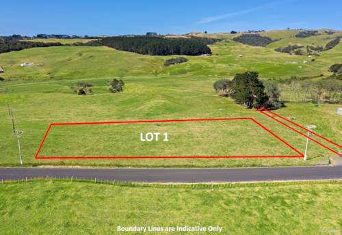 Waiuku, SELLER READY TO NEGOTIATE, Property ID: 597600 | Barfoot & Thompson