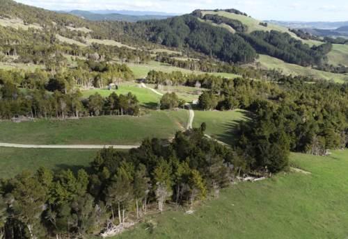 Okaihau, 164ha Beef Finishing Unit/Outdoor Adventure Playground, Property ID: 789761 | Barfoot & Thompson