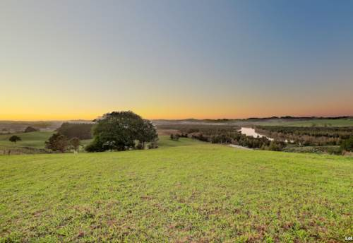 Pukekohe, 3 x STUNNING 1HA LIFESTYLE SECTIONS, Property ID: 793872 | Barfoot & Thompson