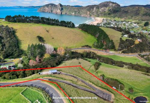 Taupo Bay, Location, Location, Location, Property ID: 794115 | Barfoot & Thompson