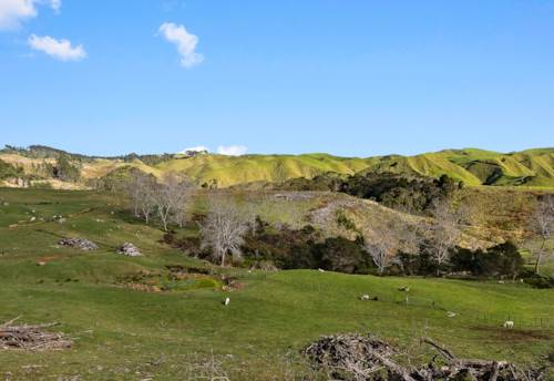Glen Murray, Glen Murray / Waikaretu, Property ID: 794026 | Barfoot & Thompson