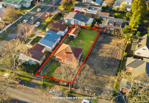 Mt Albert, Calling all the Investors and Developers, Property ID: 794543 | Barfoot & Thompson