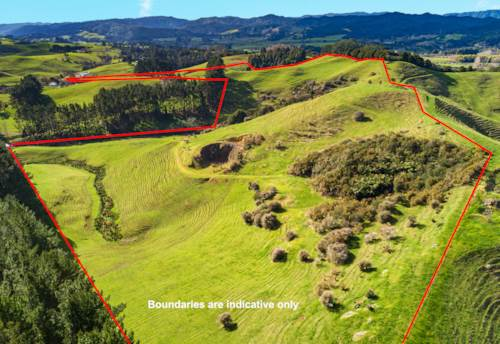 Hunua, Retired Farmer Wants Out! ? Buy 1 or Both!, Property ID: 794418 | Barfoot & Thompson
