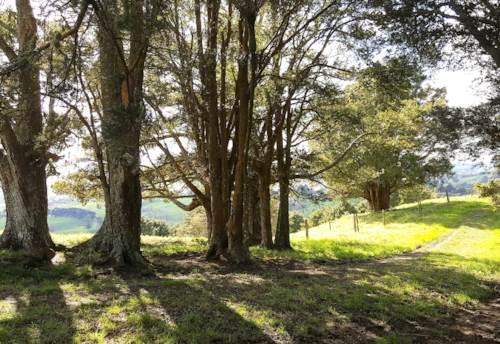 Kaiwaka, Lifestyle/Farm Block with Accommodation., Property ID: 794140   Barfoot & Thompson