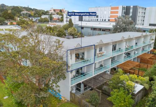 Epsom, Fabulous Investment or First Home in a Top Location, Property ID: 797045 | Barfoot & Thompson