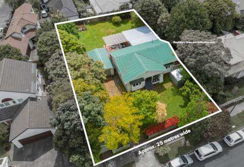 Ellerslie, 1012 Sqm Big Land -- Mixed Housing Urban Zone, Property ID: 800469 | Barfoot & Thompson