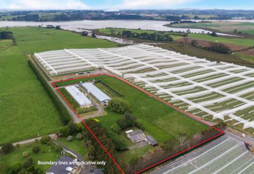 Waiuku, Auckland?Free Range Chicken Farms, Property ID: 801409 | Barfoot & Thompson