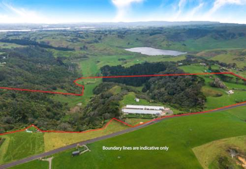 Waiuku, Auckland?Free Range Chicken Farms, Property ID: 801441 | Barfoot & Thompson