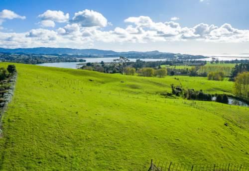 Mangawhai, Massive Sea Views and Close To Town, Property ID: 801551 | Barfoot & Thompson