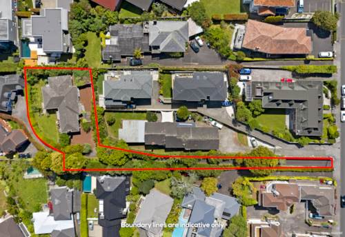Remuera, Developers or Investors-1520m2 in DGZ, Property ID: 801947 | Barfoot & Thompson