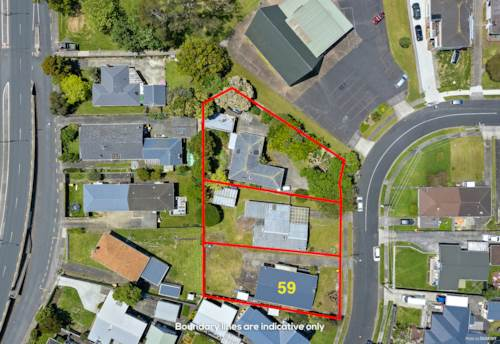 Pakuranga, 2218m² Terrace Housing and Apartment Zone, Property ID: 802218 | Barfoot & Thompson