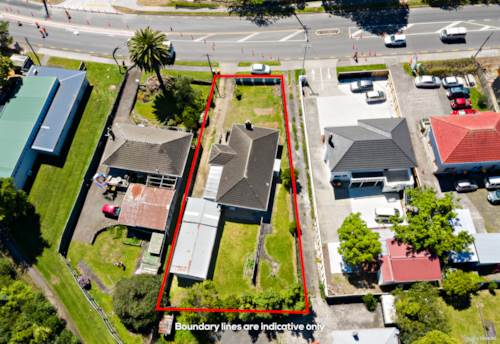 Henderson, 1st home buyers & developers must see!, Property ID: 803065 | Barfoot & Thompson
