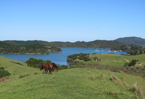 Whangaruru, Coastal Lifestyle - Buy 1, 2 or all 5!, Property ID: 803070 | Barfoot & Thompson