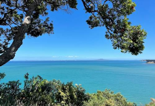 Arkles Bay, Clifftop Section with stunning views and Location, Property ID: 804032   Barfoot & Thompson