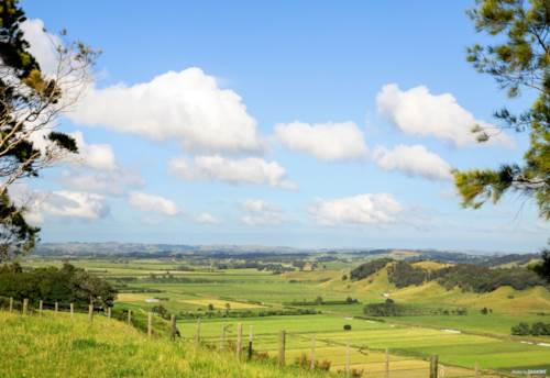 Pukekohe, UNPARALLELED EXCEPTIONAL VIEWS - ELEVATED SITE - 9702m2, Property ID: 804016 | Barfoot & Thompson
