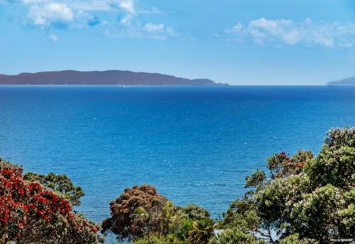 Army Bay, So Many Possibilities - Spectacular Sea Views, Property ID: 804260 | Barfoot & Thompson