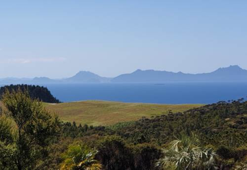 Langs Beach, Bush, Sea & Beyond - ONE LEFT, Property ID: 779728 | Barfoot & Thompson