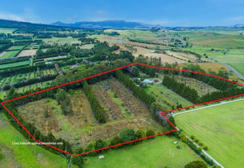Maungatapere, Orchard Re-Development Opportunity - Horticulture/Lifestyle, Property ID: 804047 | Barfoot & Thompson