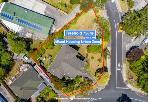Henderson, Mixed Housing Urban Zone - Potential For 6 Dwellings, Property ID: 806374 | Barfoot & Thompson