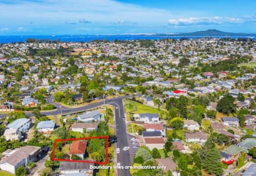 Sunnynook, Huge Potential in Urban Zone & Dual Westlake Zones, Property ID: 806753   Barfoot & Thompson