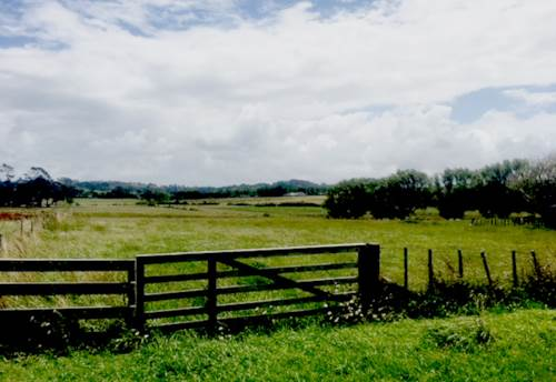 Dairy Flat, 5.7 acres Flat Land, Land bank can withdraw money quickly, Property ID: 804131 | Barfoot & Thompson