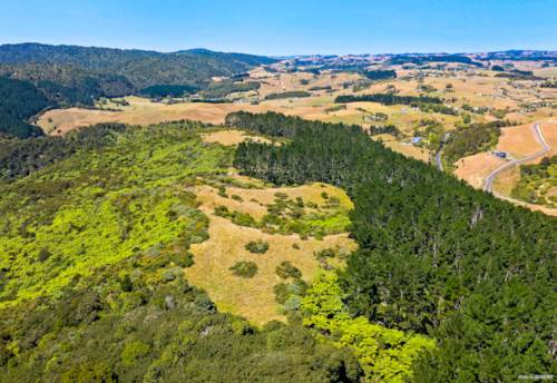 Hunua, PEACE, PRIVACY PLUS POTENTIAL, Property ID: 807187 | Barfoot & Thompson