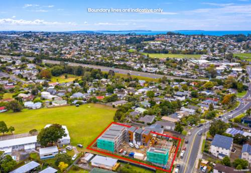 Sunnynook, Superb Buying in Superb Location, Property ID: 809402   Barfoot & Thompson