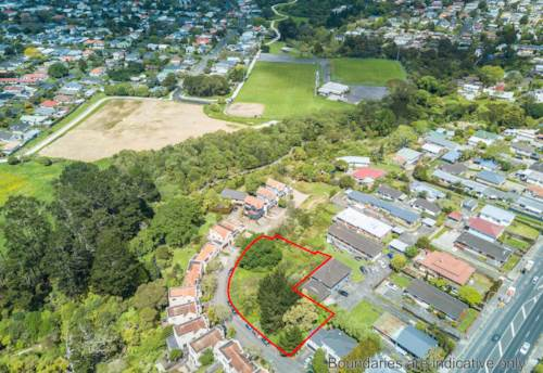 Waterview, RARE DEVELOPMENT OPPORTUNITY ON 1,815M2 SECTION, Property ID: 809357 | Barfoot & Thompson