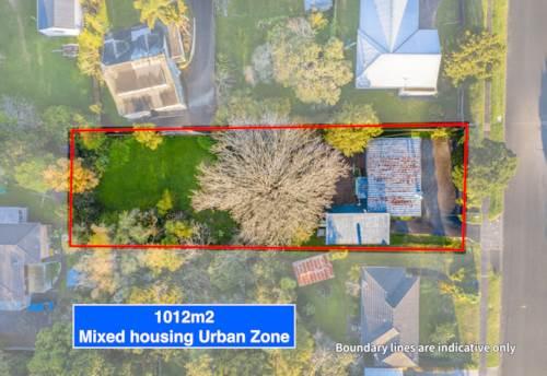 Glen Eden, 1012m2 of opportunity in Urban Zone, Property ID: 809460   Barfoot & Thompson