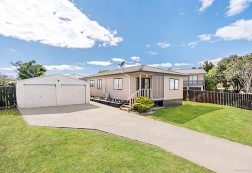 Clendon Park, FAMILY HOME PLUS ONE BEDROOM SLEEPOUT, Property ID: 809688 | Barfoot & Thompson