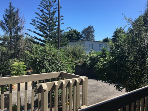 Howick, PRETTY ON PATONS!, Property ID: 17001919 | Barfoot & Thompson