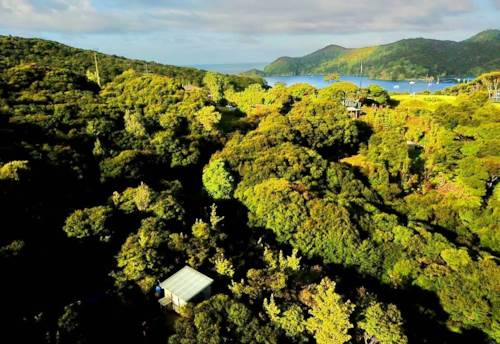 Great Barrier Island, Livable on Lush North Facing Site, Property ID: 810089 | Barfoot & Thompson