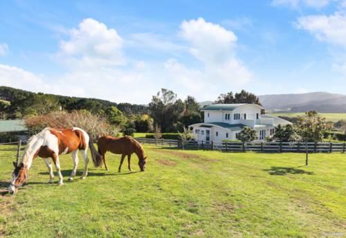 Mangatangi, Country and Coastal Lifestyle on 50 Acres, Property ID: 810120   Barfoot & Thompson