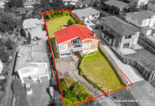 Mt Roskill, DEVELOP, LAND BANK OR LIVE IN, Property ID: 810905 | Barfoot & Thompson
