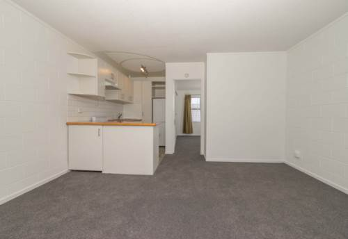 Mt Eden, Double Grammar Zone - Newly renovated Unit, Property ID: 32001446 | Barfoot & Thompson