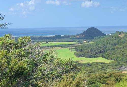 Great Barrier Island, Development opportunity in great location, Property ID: 810095 | Barfoot & Thompson