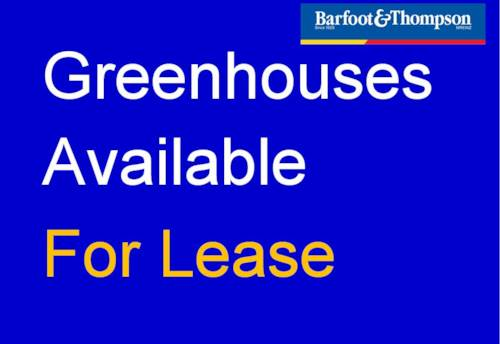 Drury, Greenhouses Available For Lease - $500 + GST per week, Property ID: 59001717 | Barfoot & Thompson