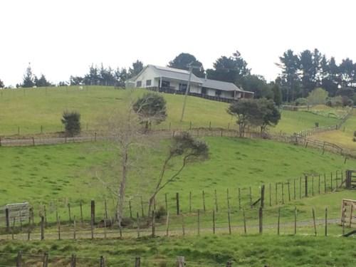 Waitakere, Stylish Country Living, Property ID: 87002251 | Barfoot & Thompson