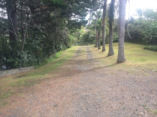Waitakere, Peace & Tranquility, Property ID: 87002256 | Barfoot & Thompson
